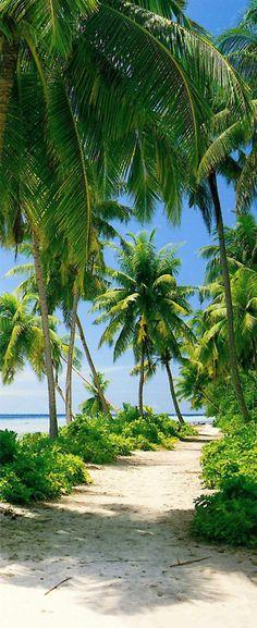 Beautiful walk to the beach ! #Beach