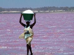 Il lago rosa del #Senegal è una cosa da vedere, ne avevamo uno rosso anche in #Italia - lago Tovel
