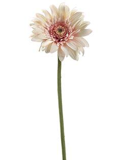 "21"" Gerbera Daisy Spray in Pink Cream #DBBridalStyle"