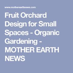 Fruit Orchard Design for Small Spaces - Organic Gardening - MOTHER EARTH NEWS