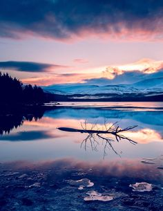 The colours of a Winter thaw at Loch Morlich, Cairngorms, Scotland.