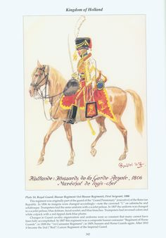 Kingdom of Holland: Plate 14. Royal Guard, Hussar Regiment, First Sergeant, 1806