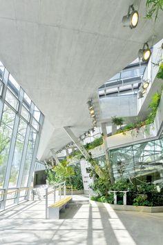 Gallery of Great Ape House / Hascher Jehle Architektur - 4