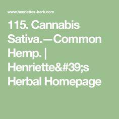 115. Cannabis Sativa.—Common Hemp. | Henriette's Herbal Homepage Hemp, Cannabis, Herbalism, History, Math, Learning, Herbal Medicine, Historia, Math Resources