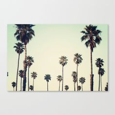 California++Canvas+Print+by+Bree+Madden++-+$85.00
