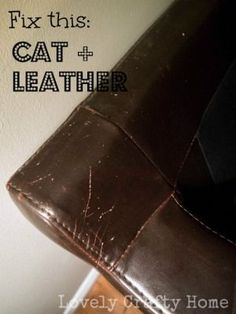 Superbe How To Fix Cat Scratches On Leather Lovely Crafty Home