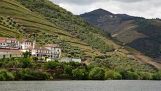 The Douro Valley (and its vineyards) - our favorite part of Portugal