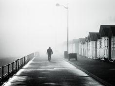 Le brouillard a tout pris ...