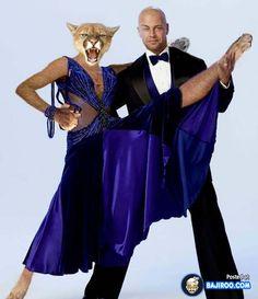 DWTS Season 3 Fall 2006 Joey Lawrence and Edyta Sliwinska Placed Dance Humor, Funny Dance, Joey Lawrence, Cheryl Burke, Dancing Animals, Beautiful Costumes, Animal Fashion, Dancing With The Stars, Couple Posing