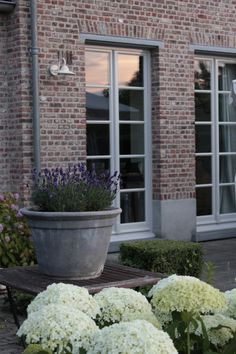 Landelijk, country living, note the wall lamp, ideal for garden wall.