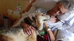 After being admitted to a hospice, Kevin McClain's main worry was not for himself, but his dog Yurt. Here is the detailed story. Heartbreaking and lovely.