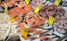 Fight Against Widespread Seafood Fraud Joined on State, Federal Levels