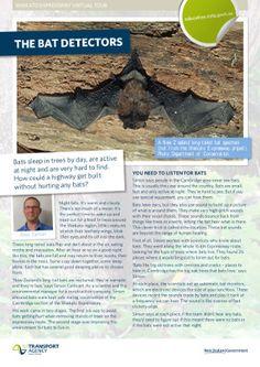 Page 1 of The Bat Detectors