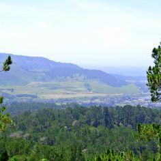 Jacks Peak County Park - Monterey, CA, United States