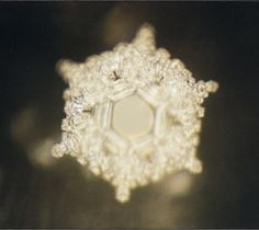 """""""Love And Gratitude"""" Water Molecule, from a study by Dr. Masaru Emoto (source: """"What the Bleep Do We Know? Masaru Emoto Water, Hidden Messages In Water, Candida Yeast Infection, Quantum World, Frozen Water, Water Molecule, Wheel Of Life, Endocannabinoid System, Ice Crystals"""