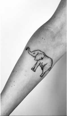 #tattoo #tattoos #elephant #elephant #smalltattoo #thevillageink #villageink #toronto