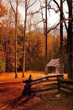 Log cabin!!