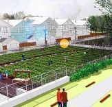 Chicago plans for an Urban Agriculture district.