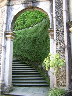 stairs with #greenwall