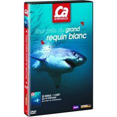 DVD Ça m'intéresse - Volume 14 - Tout près du grand requin blanc