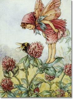 Cicely Mary Barker - Flower Fairies of the Wayside - The Red Clover Fairy