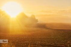 Hello Morning by Sebastian Rudnicki on 500px