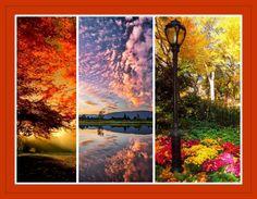 Mensagens-blog Entre Arte, Poesias e Cartões Flores e Belezas da natureza: Belezas da Natureza N31