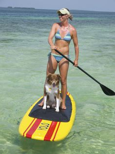 Paddleboard Tours - The Lazy Dog