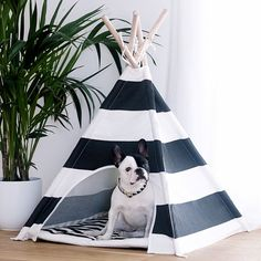 Perfect match: Mango & Teepee from #pipolli www.pipolli.com