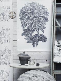 Interiors - Petra Bindel