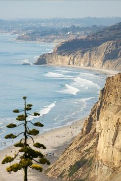 Discover 12 of the best day hiking trails near San Diego, California, including Cowles Mountain, Torrey Pines State Reserve, and Cuyamaca Peak. Hiking Spots, Hiking Trails, Torrey Pines State Reserve, Torrey Pines Hike, Scenic Photography, Landscape Photography, London Photography, San Diego Travel, Mountain States