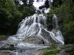 Cascata Bolo de Noiva - Cachoeira Bolo de Noiva Floresta Nacional de São Francisco de Paula, RS - Brasil
