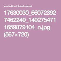17630030_660723927462249_1492754711659879104_n.jpg (567×720)