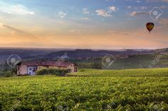 View Hills And Vineyards Under Beautiful Colorful Evening Sky ...