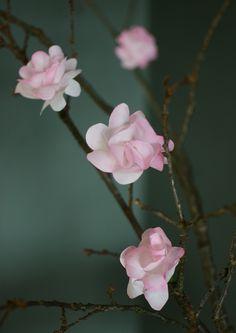 Söta blommor av kaffefilter av Hemma med Helena