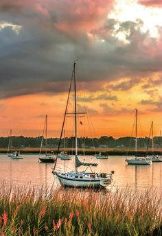 Sunrise in the Harbor by Karen Wallace