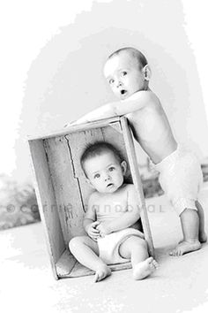 Twins - love that if one is in the box and the other is outside the box, they both have a wall to lean against instead of each other