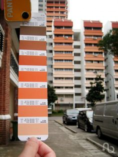 HDBs, government-subsidized residential buildings in Singapore. Love the pantone comparison :)