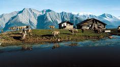 Blausee - Switzerland Tourism