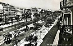 Avenida da Liberdade 1955