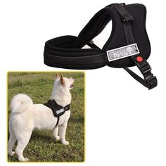 Ecoastal Dog Body Harness Padded Extra Chest Straps Heavy Duty with Handle Comfortable for Labrador, Golden Retriever, Samoyed, Husky Large Dogs >>> Read more at the image link. (Amazon affiliate link)