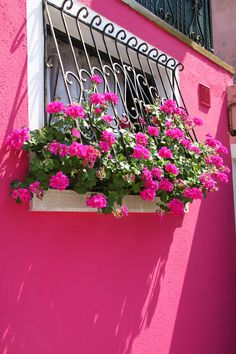 pink and green window box flowers on a bright pink house - fenetre - window Balcony Flower Box, Window Box Flowers, Window Boxes, Flower Boxes, Garden Windows, Balcony Garden, Window Planters, Pink Houses, Little Flowers