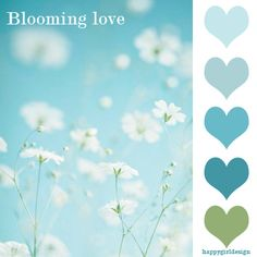 blooming love color combo