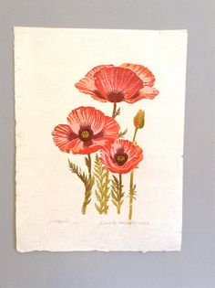 Vintage Woodblock of 3 Poppies by Beverly Hackett