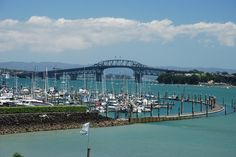 Auckland_Harbour_Bridge from Bayswater Marina