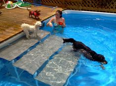 Above ground pools have always been the best and the cheapest option to build swimming pool. Here's the reason why you should invest in above ground pool rather than in-ground ones. We have above ground pool tips and ideas. Above Ground Pool Steps, Above Ground Pool Landscaping, Swimming Pool Landscaping, Above Ground Swimming Pools, In Ground Pools, Swimming Pool Steps, Pvc Pool, Oberirdischer Pool, Intex Pool