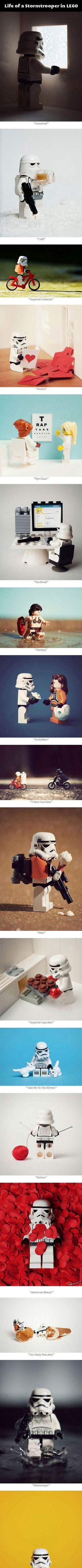 The Life ...  http://www.gzmoe.com/geek2.aspx