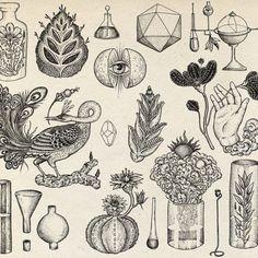 "katie-scott: "" Line work for perfumer Barnabe Fillion. (at Stoke Newington) "" Art And Illustration, Gravure Illustration, Flash Art Tattoos, Kunst Inspo, Art Inspo, Symbol Tattoos, Tattoo Drawings, Art Drawings, Hippie Art"