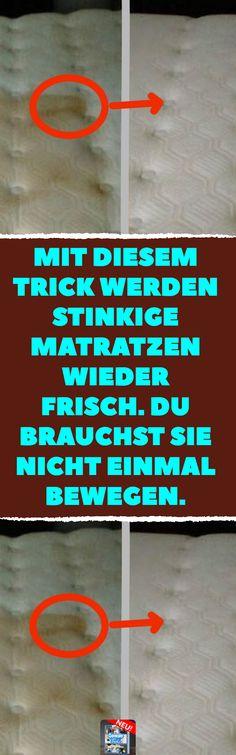 18 Besten Wandfarbe Bilder Auf Pinteresteine weitere wordpress ...