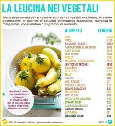 ✔ Gli 8 aminoacidi essenziali: la Leucina nei vegetali